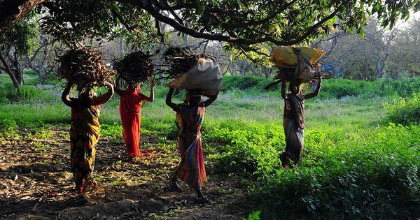 Women in rural India still struggle to get cooking fuel and water, which hurts their health