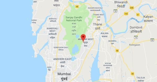 Mumbai: Leopard enters residential area in Mulund locality, injures six people