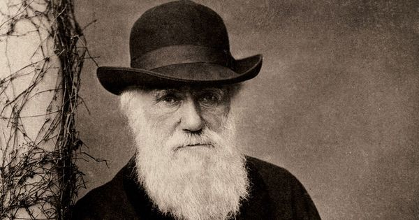 Darwin and religion: An understanding of evolution can spur wonder, just like religious faith does