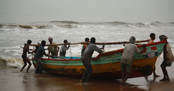 If sea levels rise by 1 metre, Tamil Nadu losses could be worth half its current economy, says study