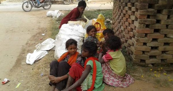 Bihar's landless Musahars may no longer be bonded labourers, but little else has changed for them