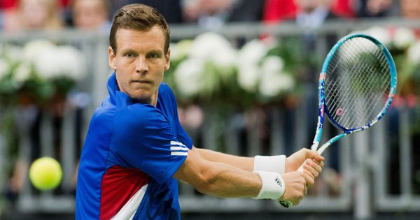Tomas Berdych pulls out of Wimbledon because of persistent back pain