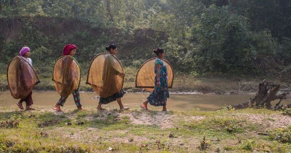 Neglected by the government and undervalued by residents, Nepal's wetlands are fast disappearing