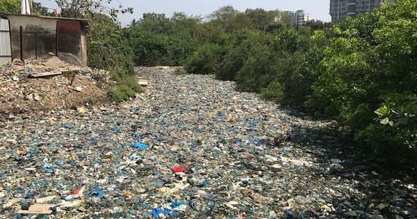 Video: Could this new clause in Maharashtra's plastic ban make it work?