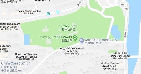 China: Kangaroo dies after visitors at a zoo pelt rocks to make it hop