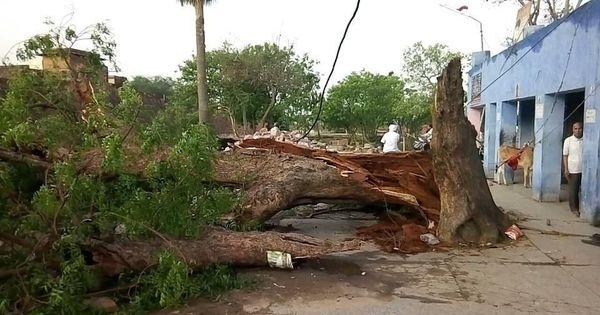 उत्तर प्रदेश और राजस्थान में तूफान से सौ से ज्यादा की मौत होने सहित आज के वीडियो समाचार
