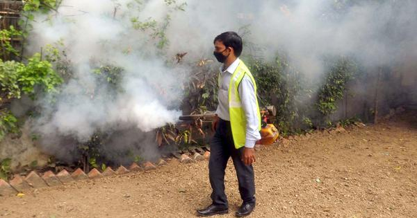 No lessons learnt: Why Delhi is staring at dengue, chikungunya outbreaks yet again this year