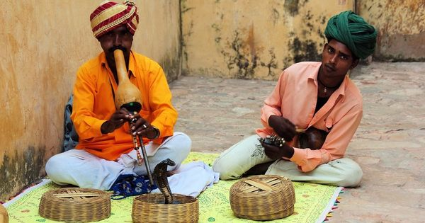 Where have all the snake-charmers and street magicians gone? A Raj-era law might be to blame