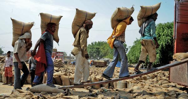 Farmer losses in Madhya Pradesh's price deficit scheme could go up to Rs 200 crore