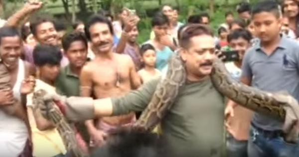 Watch: A forest ranger took a huge risk as he posed for selfies with a python who had other ideas