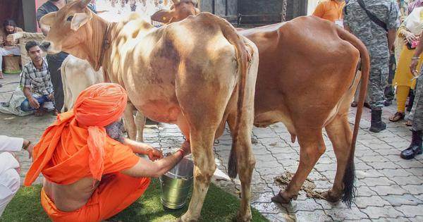 Patanjali launches packaged cow milk and other products, eyes Rs 500-crore revenue by March 2019