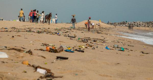 Clean beaches aren't just good for the environment – they're good for the economy too