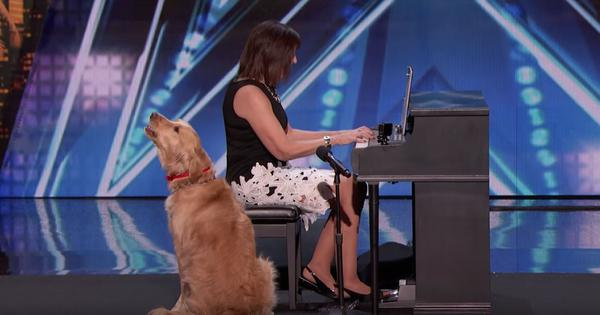 Watch: This singing dog has impressed everyone, including Simon Cowell, on America's Got Talent