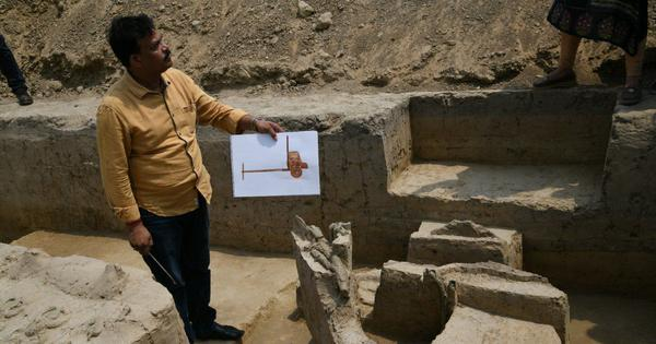Putting the horse before the cart: What the discovery of 4,000-year-old 'chariot' in UP signifies