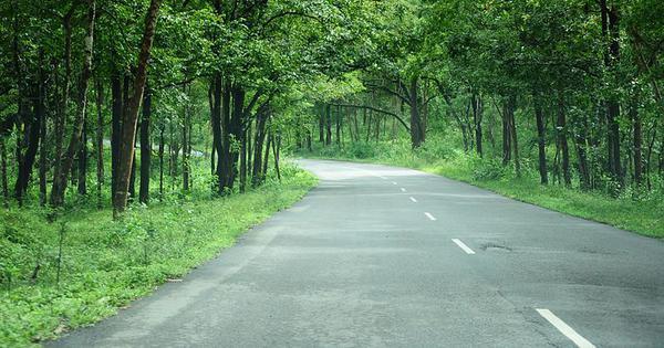Centre writes to Karnataka on lifting night traffic ban on NH 766 passing through Bandipur reserve