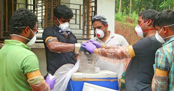How a team of Kerala doctors helped detect the presence of the deadly Nipah virus in record time