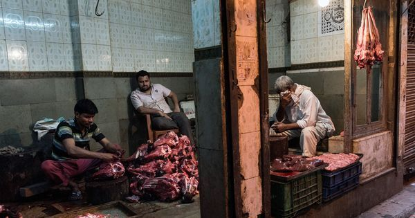 Kerala: BJP's district unit launches co-operative society to sell beef