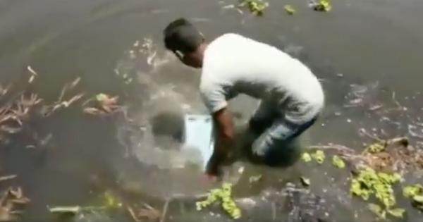 Watch: A ballot box was retrieved from a pond in Sonadangi in West Bengal during panchayat polls