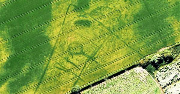 Mapping cropmarks from the air: Dry summer yields a rich harvest of archaeological finds in the UK