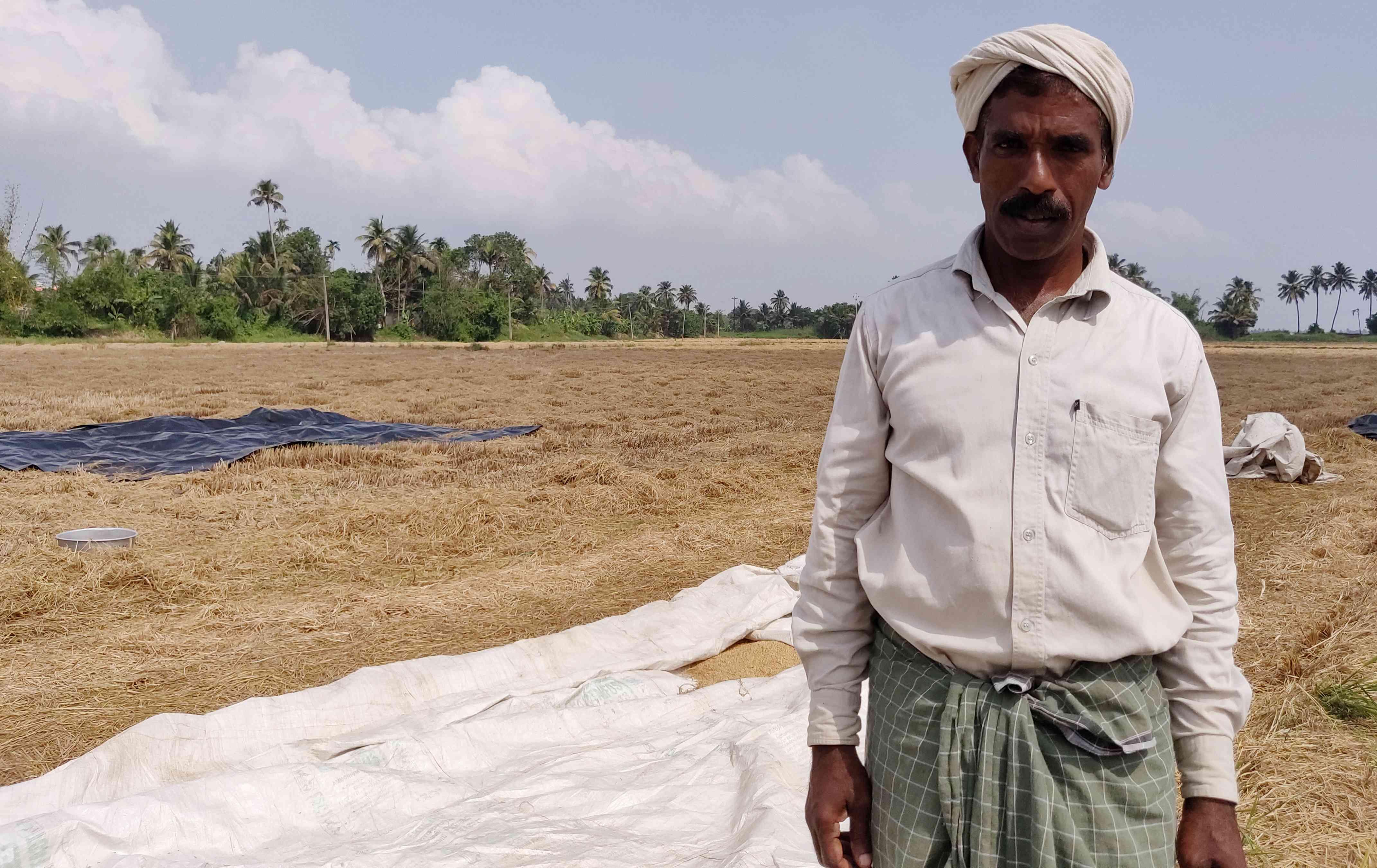 Babu Alakkad in his paddy field in Kainakaray, Kuttanad. Photo credit: TA Ameerudheen