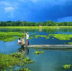 Majuli is hoping to elect Assam's next CM, but will that really help the people of the river island?