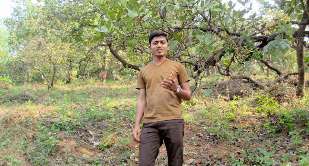 Teacher and environmentalist Vitthal Shelke campaigns among cashew farmers and workers to avoid direct confrontation with monkeys (Photo: Tarun Kanti Bose)