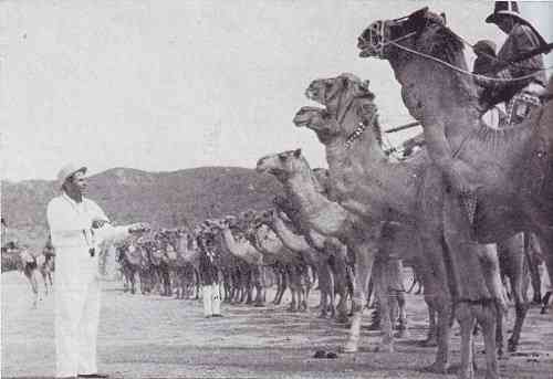 Sohrab Modi with the Bikaner Camel Corps on the sets of Jhansi Ki Rani (1953). Courtesy Mehelli Modi.