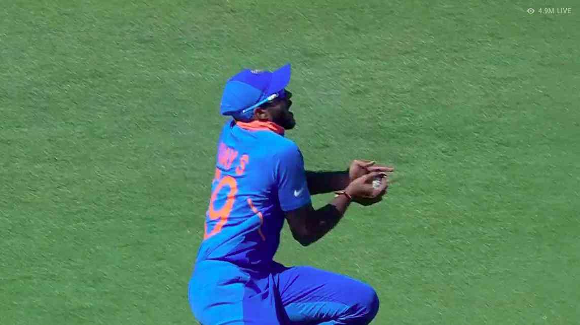 Vijay Shankar takes the catch