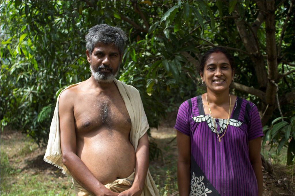 Vijayan and Chitra at their mango grove. Photo credit: Meenakshi Soman