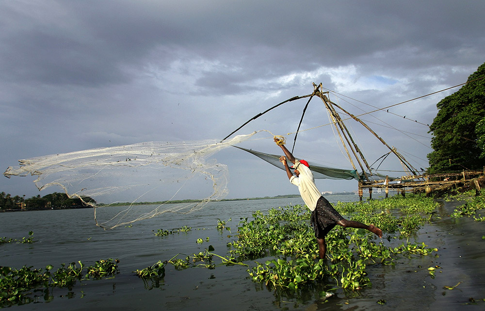 An Indian fisherman catches fish in front of the popular Chinese nets at Fort Kochi. Credit: Manan Vatsyayana/AFP