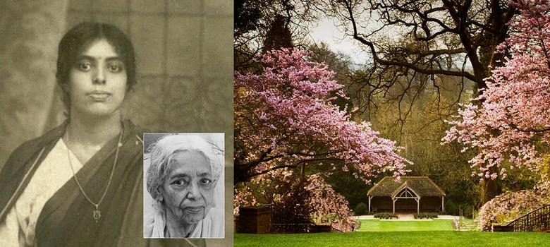 Remembering Dr Janaki Ammal, pioneering botanist, cytogeneticist and passionate Gandhian