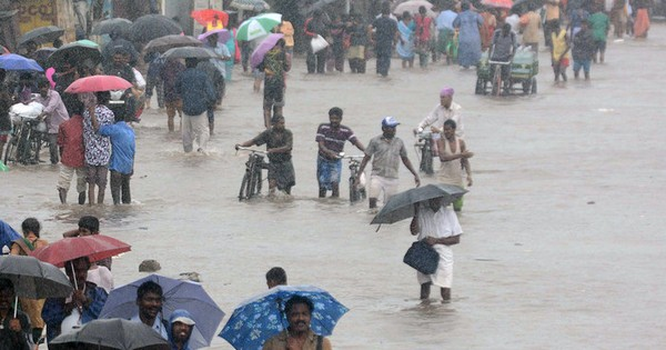 Tamil Nadu, Puducherry hit by heavy rain again, normal life disrupted