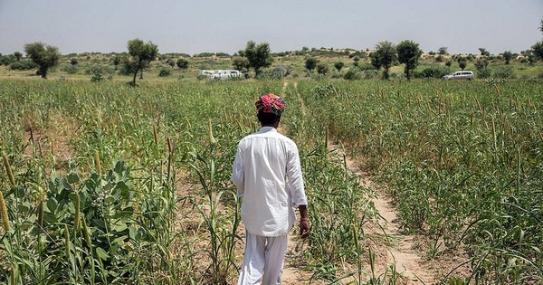 Should an agro company with Rs 215-crore profit be tax exempt like a farmer?