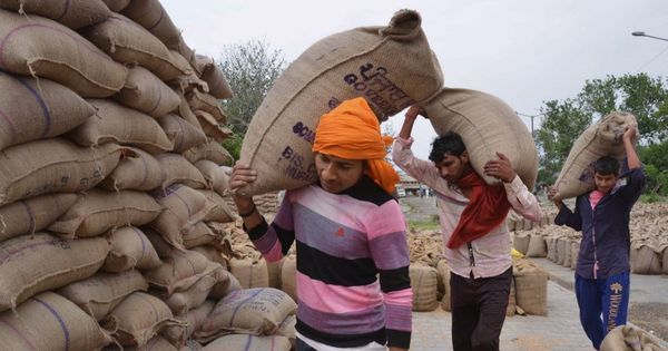 Indian government plans two new schemes to procure crops – but may lack capacity to do so