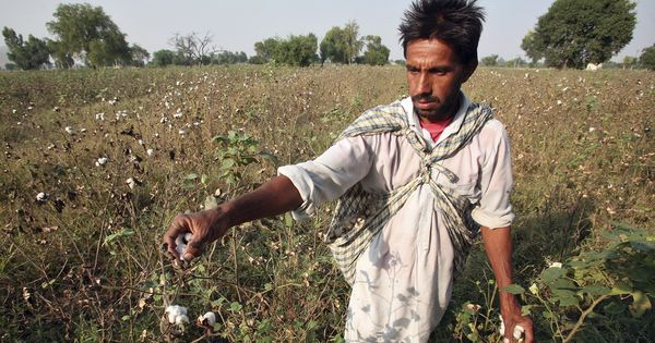 Evidence from Vidarbha: Psychological first aid prevents suicide among farmers
