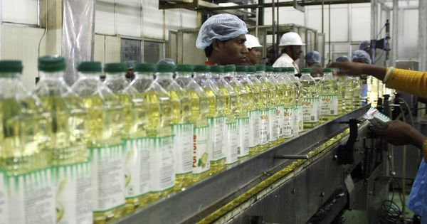 India relies on edible oil imports as demand rises, production falls