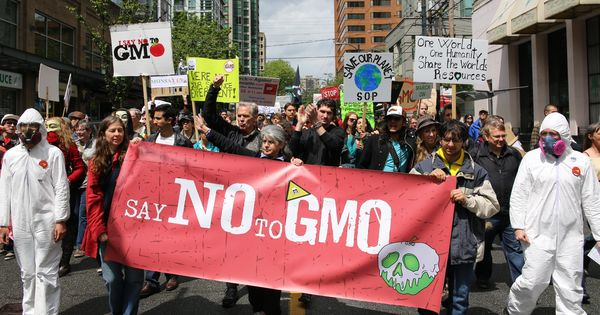 The failure of scientists to understand GM opposition is stifling debate and halting progress