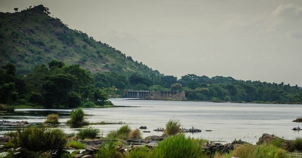 Centre wants to transfer surplus water from Godavari river to Cauvery to help Tamil Nadu
