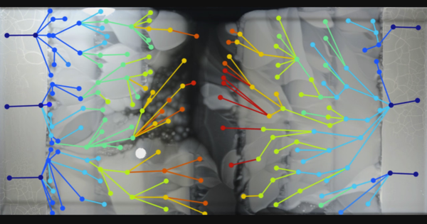 This terrifying video shows bacteria becoming drug-resistant though real-time evolution