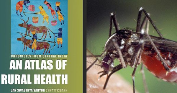 The 2010 malaria tragedy: Stories of seven lives unnecessarily lost