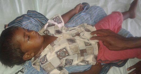 Thirty children in Odisha's Malkangiri have died of Japanese encephalitis in just 25 days