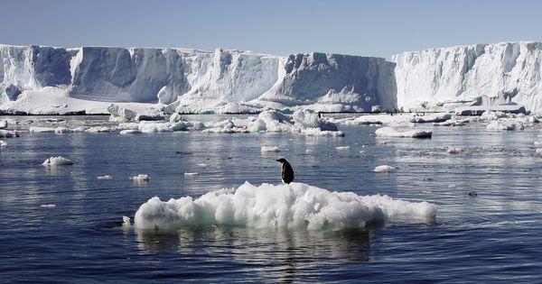 Antarctica has lost three trillion tonnes of ice in 25 years