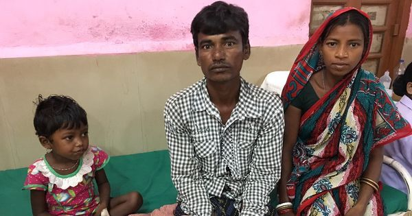 Did wild seeds lead to child deaths in Malkangiri? A new report provokes debate