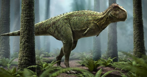 When Rajasaurus and other dinosaurs roamed the land where Indians live now