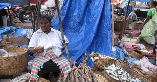 In Goa's fishing industry, sales fall and anger rises as going cashless remains a distant dream