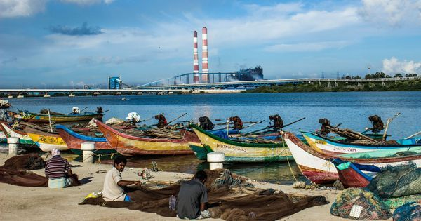 In pictures: How a power plant devastated the pristine beauty of a creek near Chennai