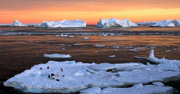 Scientists confirm Antarctica's highest temperatures ever, will track climate change using them