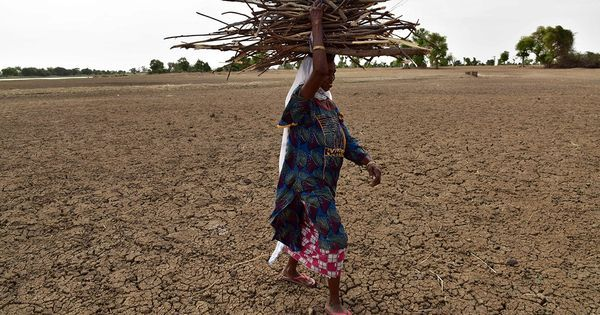 Dipole: The 'Indian Niño' that has brought devastating drought to East Africa