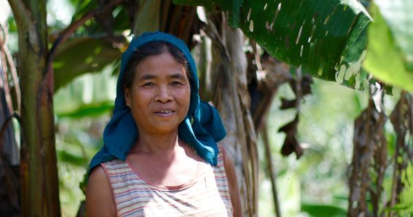 Climate change and conflict: Manipuri women are fighting a war for survival on two fronts