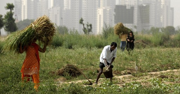 Why settlements on the edges of cities like Noida's Sarfabad fall in public health blindspots